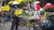Latitude180-vietnam-hanoi-2016-39