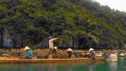 Latitude180-vietnam-bai-tu-long-allevatori-ostriche4