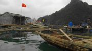 Latitude180-vietnam2016-bai-tu-long-floating-village