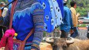 Latitude180-vietnam-bac-ha-2016-sunday-market-etnia-flower-hmong26