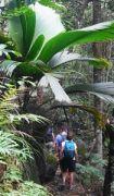 Latitude180_Seychelles_Mahe_Morne_Seychellois_National_Park