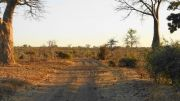 Latitude180-Botswana-2016-ChobeRiverFront23