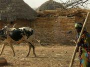 ValterCasali-BurkinaFaso2009-4