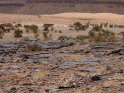 ValterCasali-Mauritania-2009-DesertoAtar2