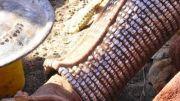 Latitude180_2016_Namibia_HimbaWoman