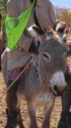 Latitude180_2016_Namibia_HimbaBoy