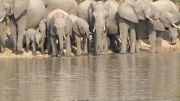 Latitude180_SudAfrica_Kruger-Timbavati11